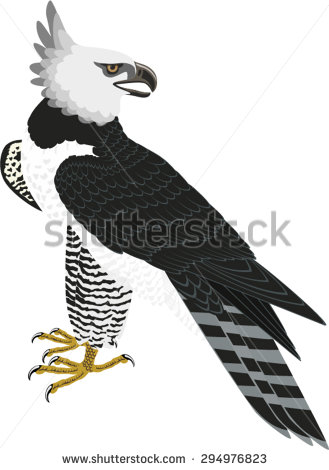 Harpy Eagle clipart #2, Download drawings