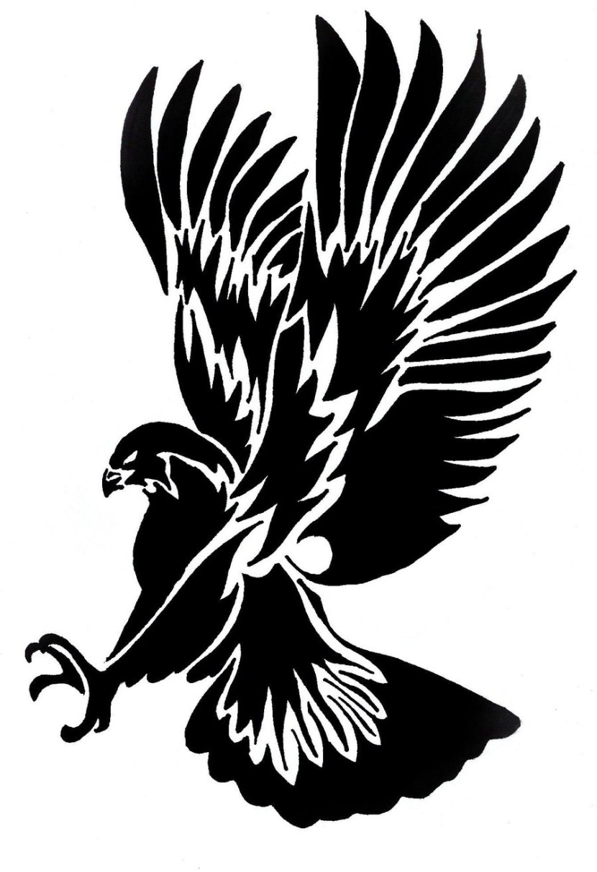 Harris's Hawk clipart #18, Download drawings