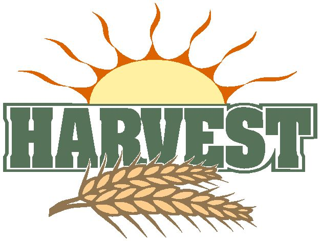 Harvest clipart #15, Download drawings