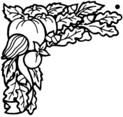 Harvest coloring #9, Download drawings
