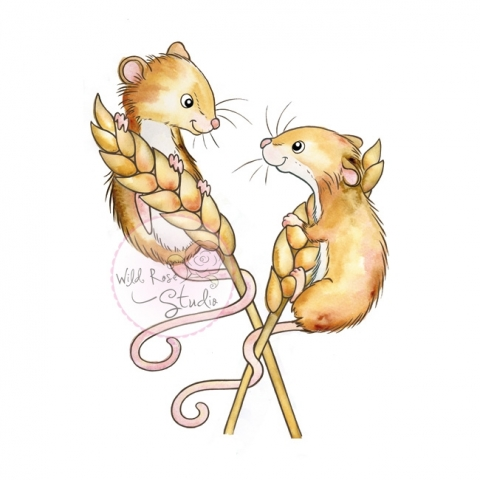 Harvest Mouse clipart #2, Download drawings