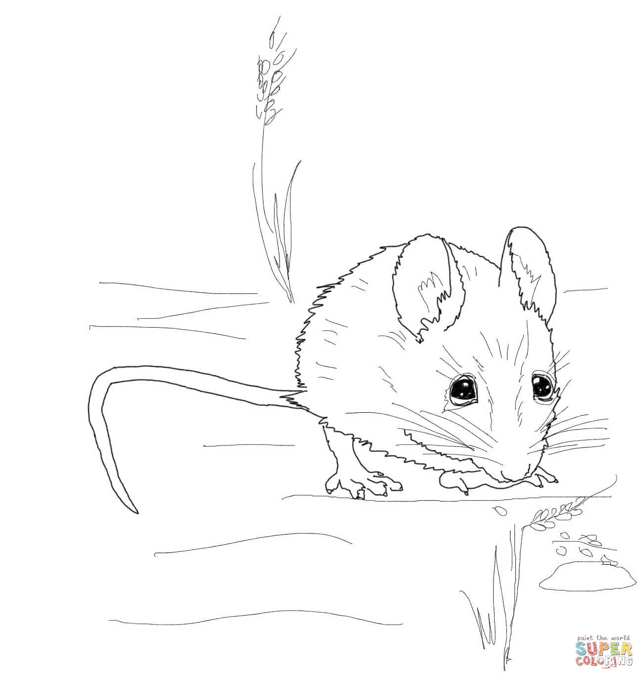 Mice coloring #7, Download drawings