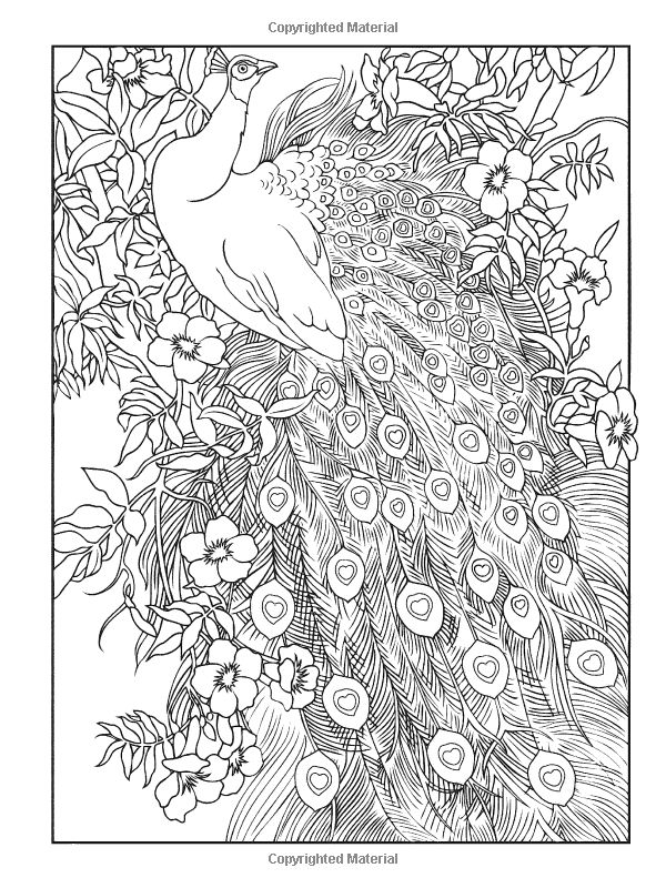 Haven coloring #20, Download drawings