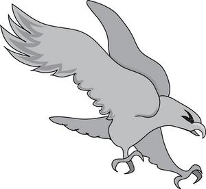 Hawk clipart #13, Download drawings
