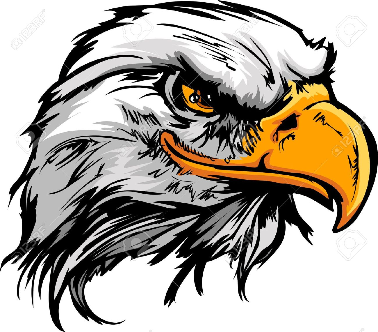 Hawk clipart #15, Download drawings
