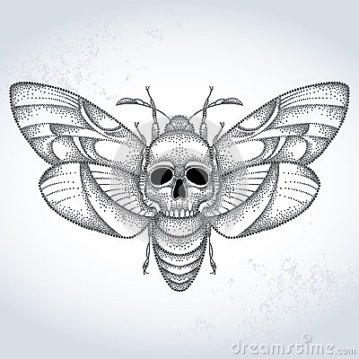 Hawk Moth clipart #8, Download drawings