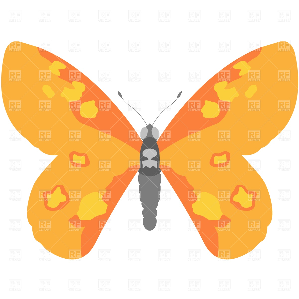 Hawk Moth clipart #2, Download drawings