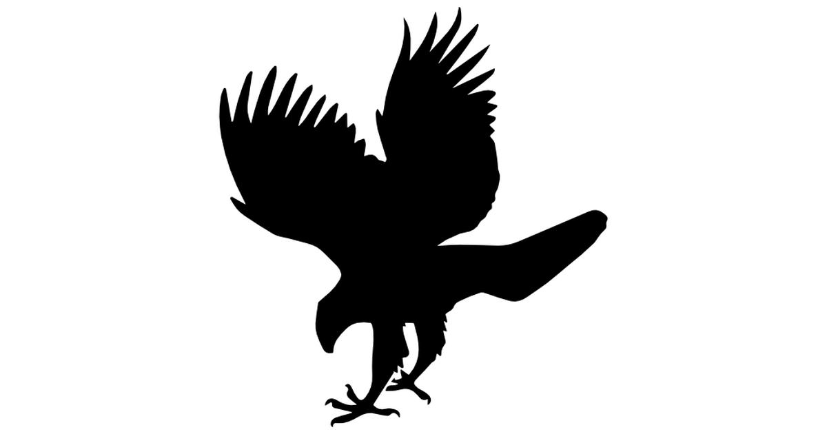 Hawk svg #20, Download drawings
