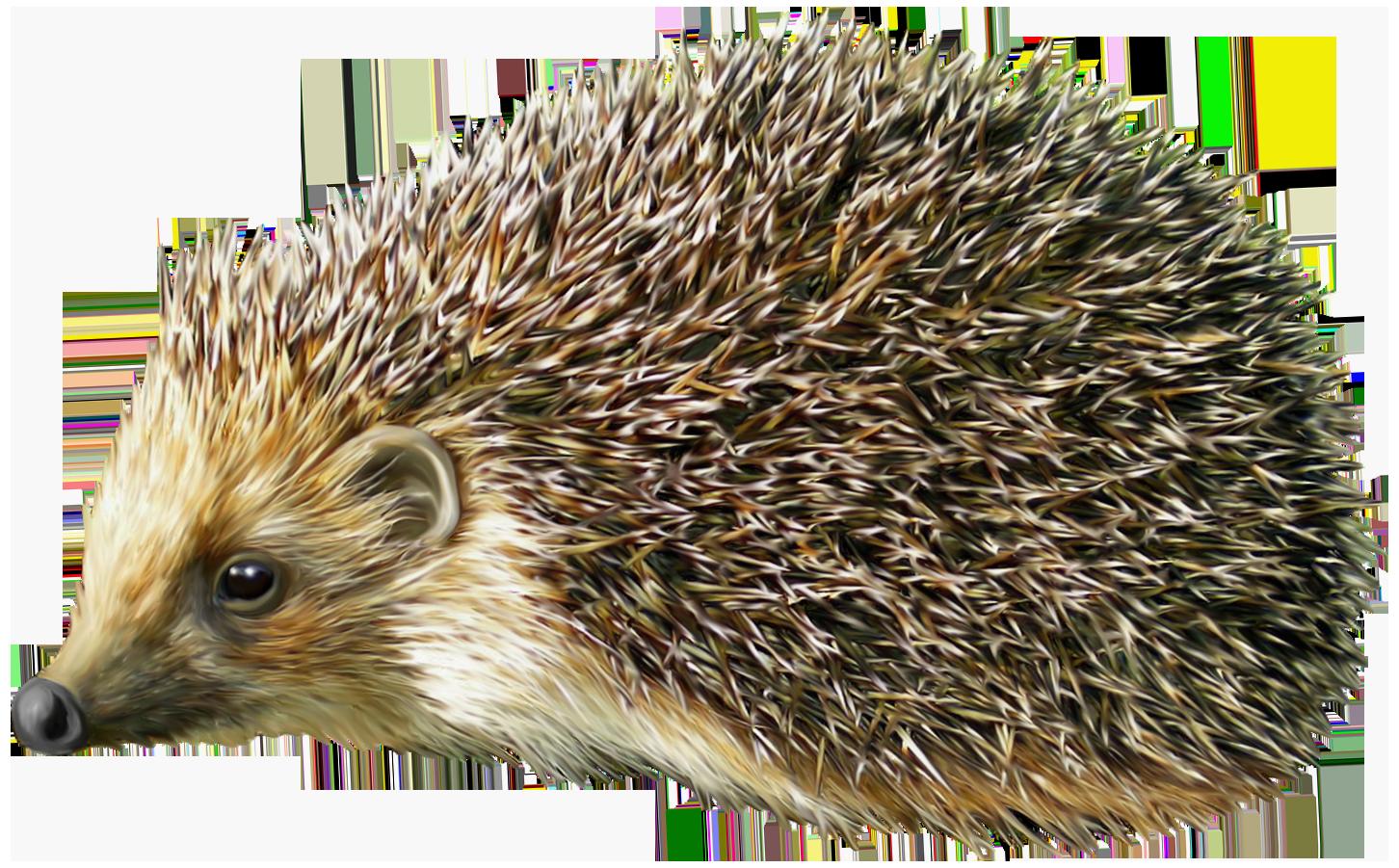 Hedgehog clipart #13, Download drawings