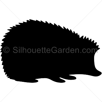 Hedgehog svg #3, Download drawings
