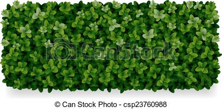 Hedges clipart #19, Download drawings