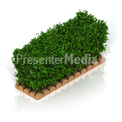 Hedges clipart #6, Download drawings