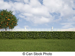 Hedges clipart #11, Download drawings