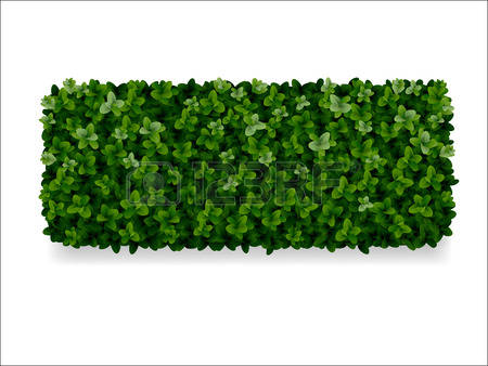 Hedges clipart #15, Download drawings