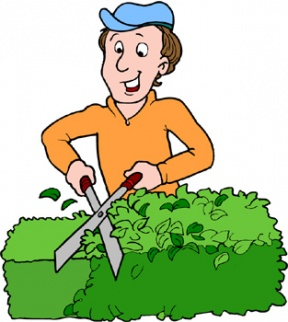 Hedges clipart #13, Download drawings