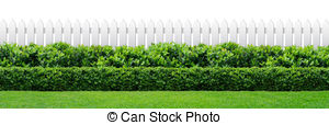 Hedges clipart #16, Download drawings