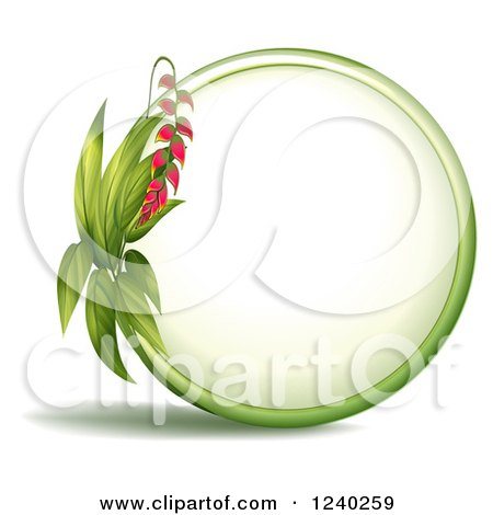 Heliconia clipart #6, Download drawings
