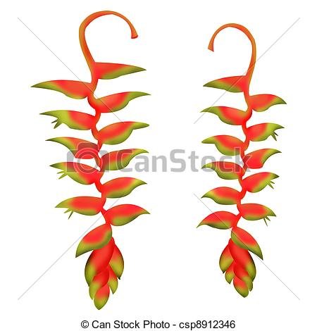 Heliconia clipart #5, Download drawings