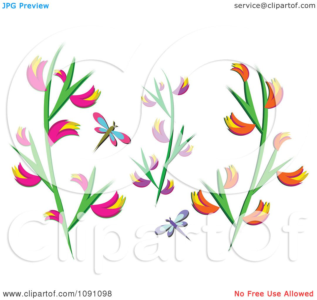 Heliconia clipart #12, Download drawings