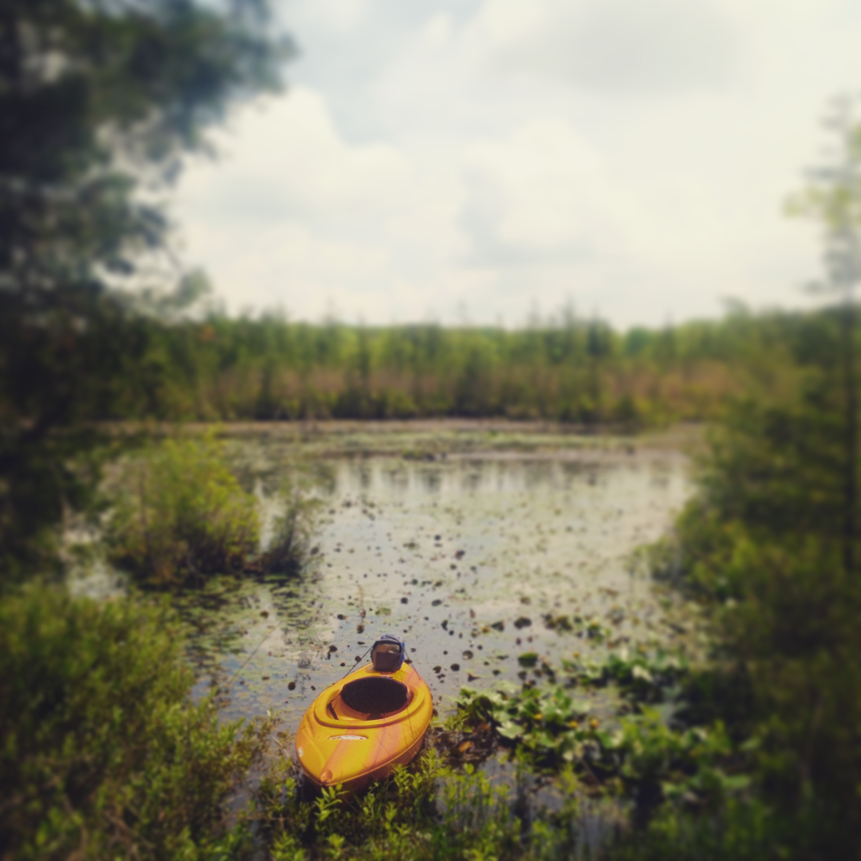 Helmetta Pond clipart #2, Download drawings