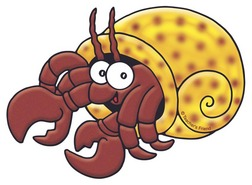 Hermit Crab clipart #5, Download drawings