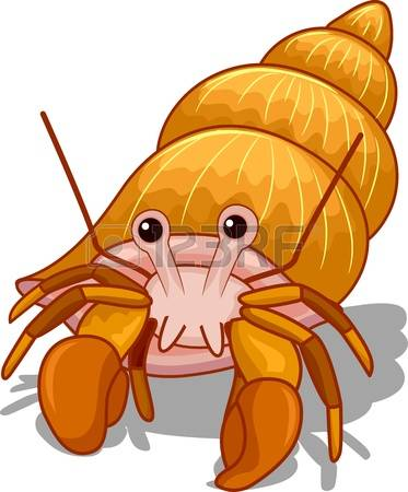 Hermit Crab clipart #7, Download drawings