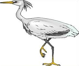 Heron clipart #13, Download drawings