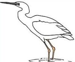 Heron clipart #5, Download drawings