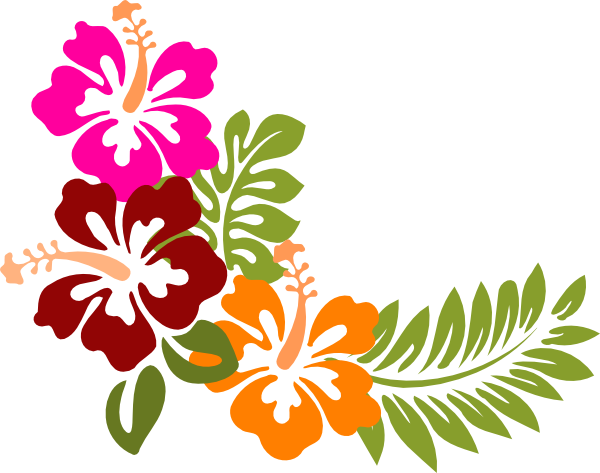 Hibiscus clipart #20, Download drawings