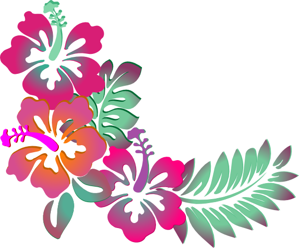 Hibiscus clipart #7, Download drawings