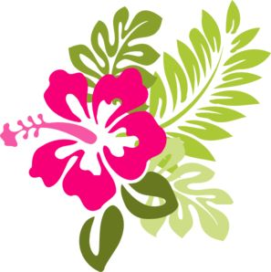Hibiscus clipart #3, Download drawings