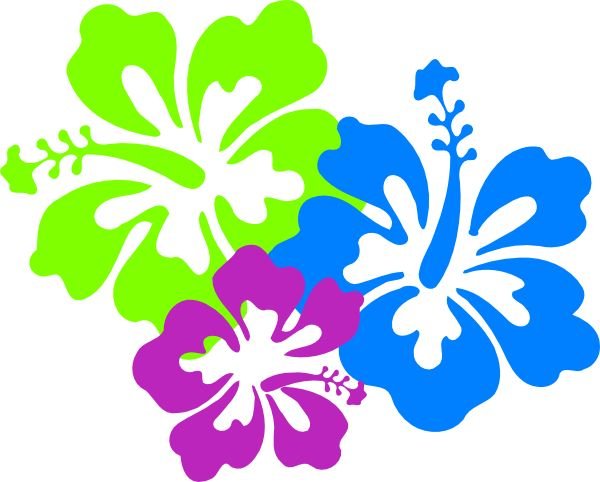 Hibiscus clipart #4, Download drawings