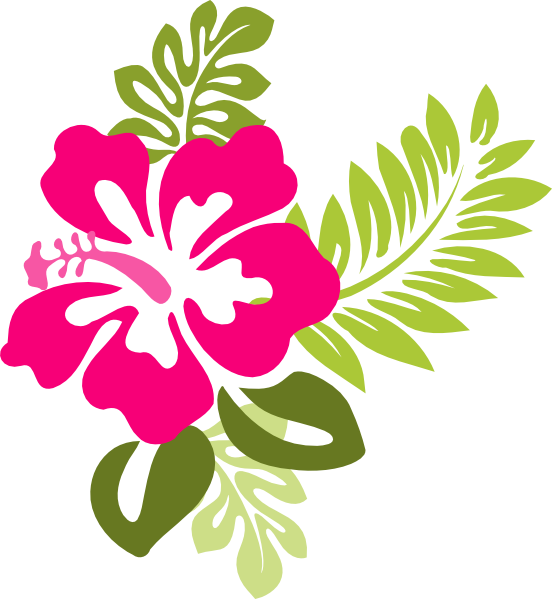 Hibisco clipart #3, Download drawings