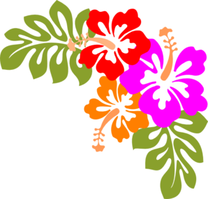 Hibiscus clipart #15, Download drawings