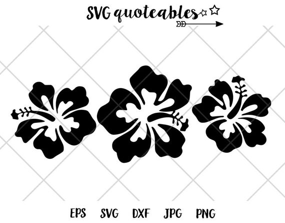 hibiscus flower svg #589, Download drawings