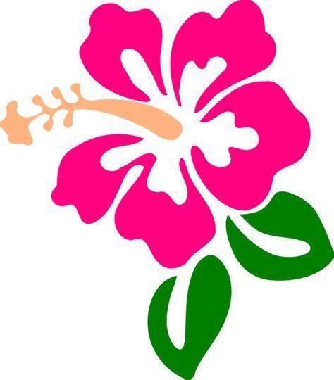 hibiscus flower svg #584, Download drawings