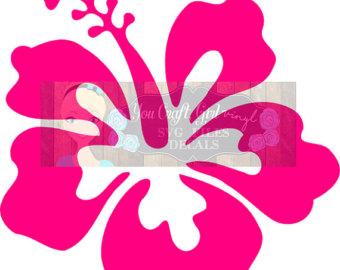 Hibiscus svg #12, Download drawings