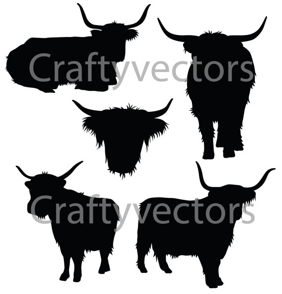 Highland Cattle clipart #19, Download drawings
