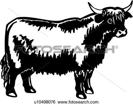 Highland Cattle clipart #4, Download drawings