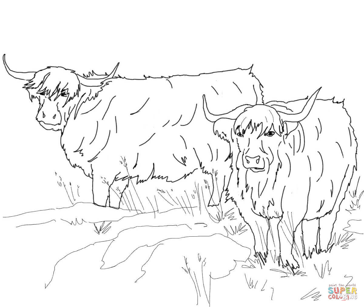 Highland Cattle coloring #16, Download drawings