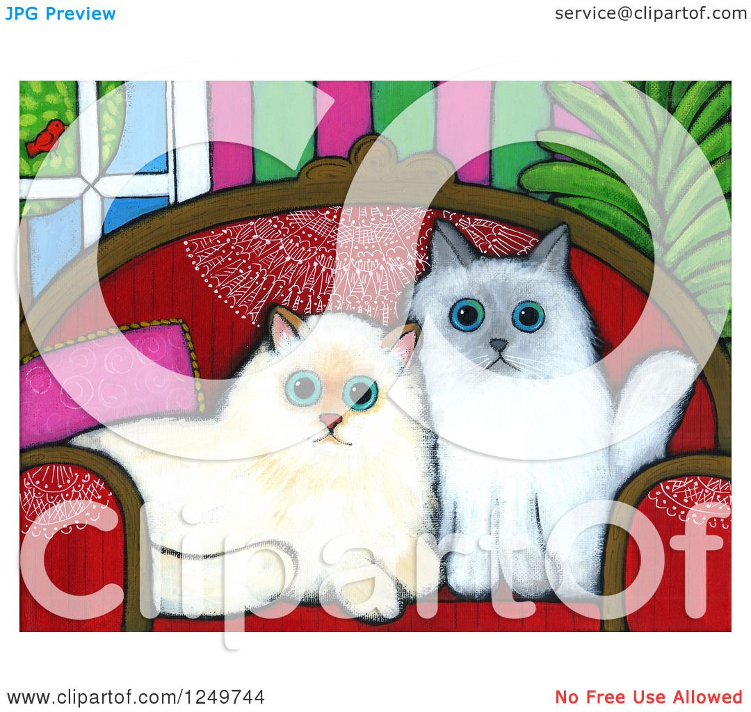 Himalayan Cat clipart #15, Download drawings