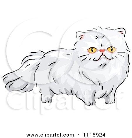 Persian Cat clipart #15, Download drawings