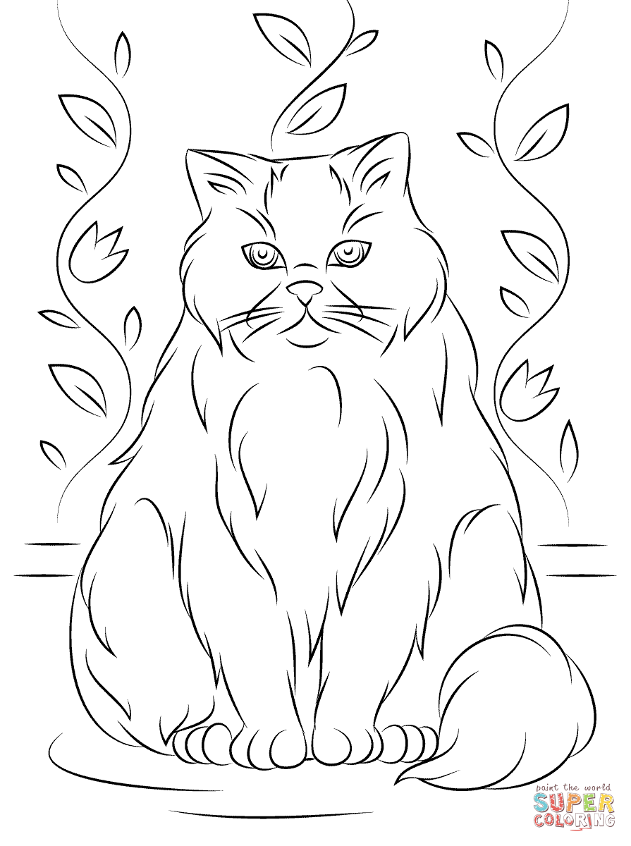 Himalayan Cat coloring #8, Download drawings
