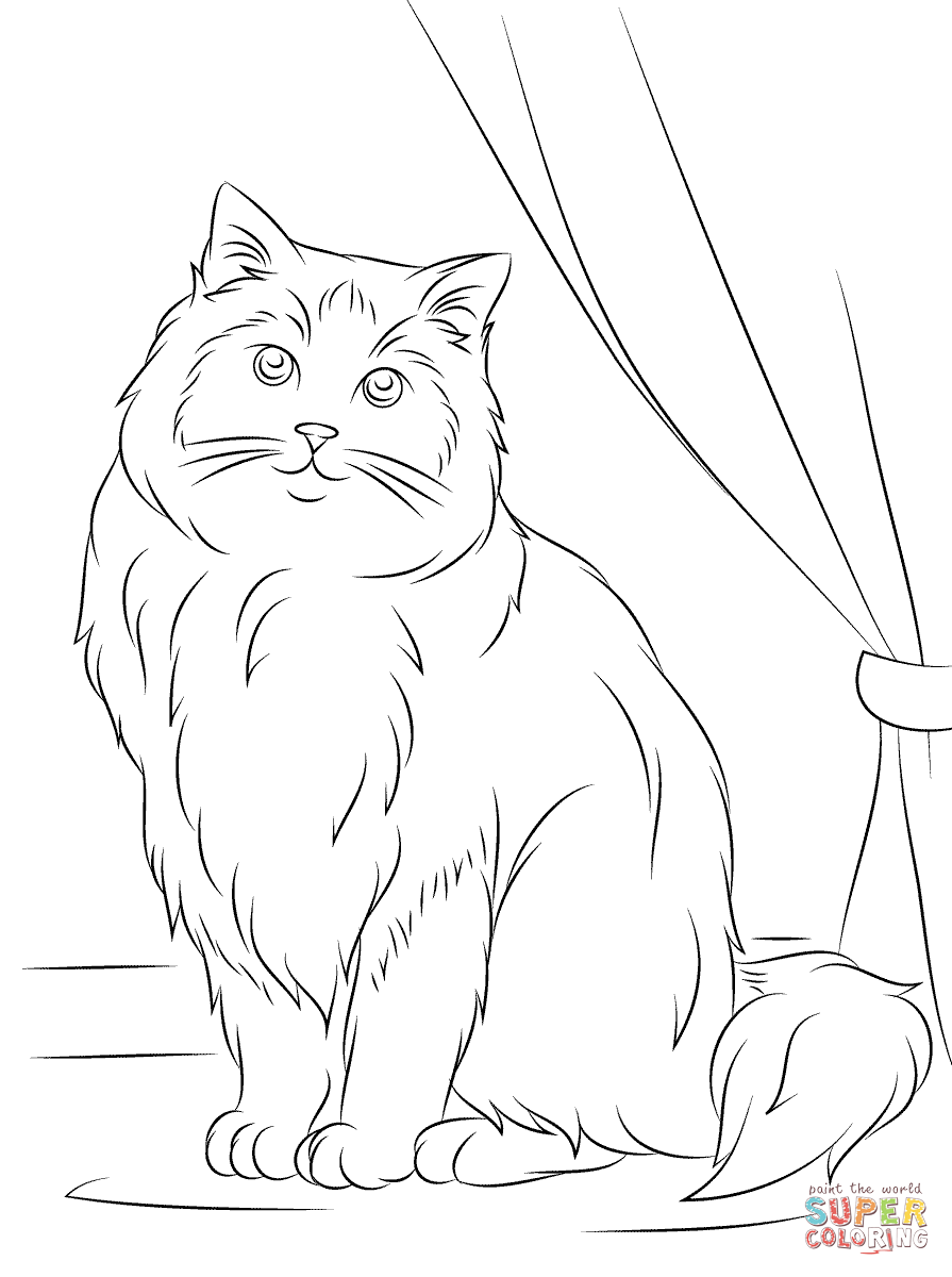 Himalayan Cat coloring #18, Download drawings