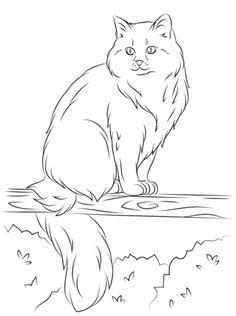 Himalayan Cat coloring #17, Download drawings
