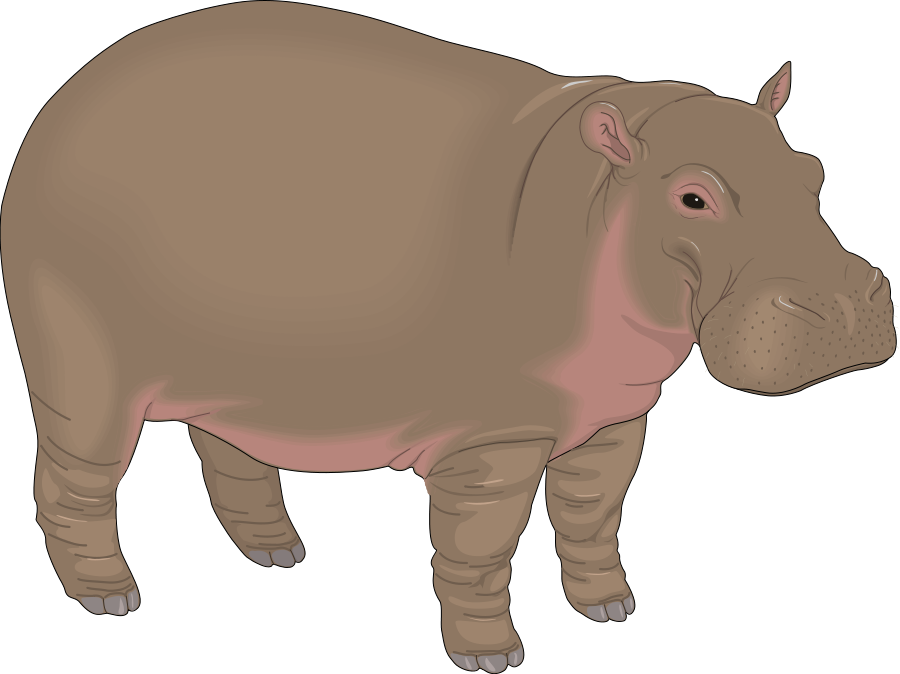 Hippo clipart #12, Download drawings