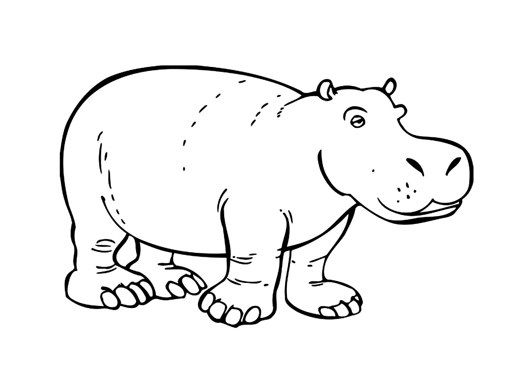 Hippo coloring #11, Download drawings