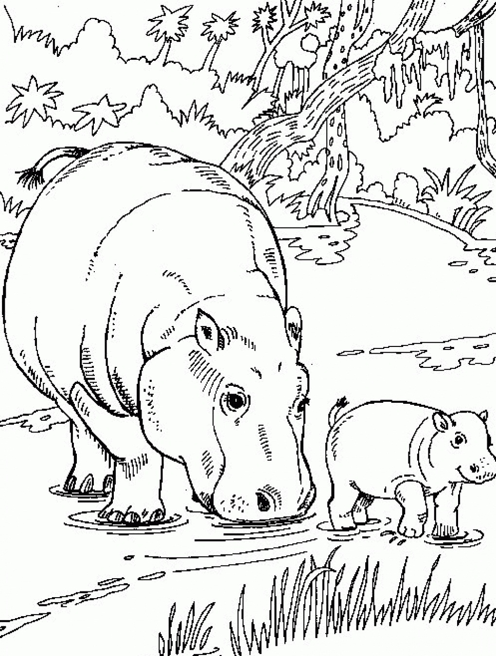 Hippo coloring #8, Download drawings