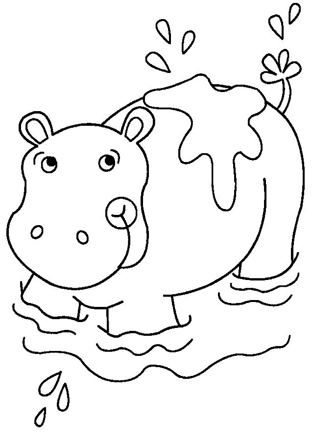 Hippo coloring #5, Download drawings