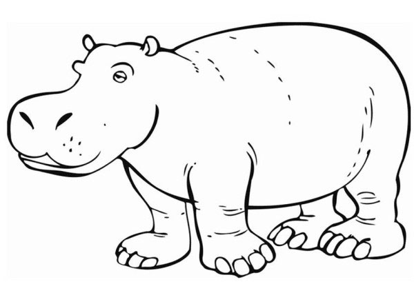 Hippo coloring #4, Download drawings